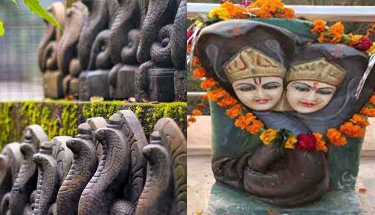भारत का विचित्र मंदिर जहां पूजा जाता है नाग-नागिन के जोड़े को