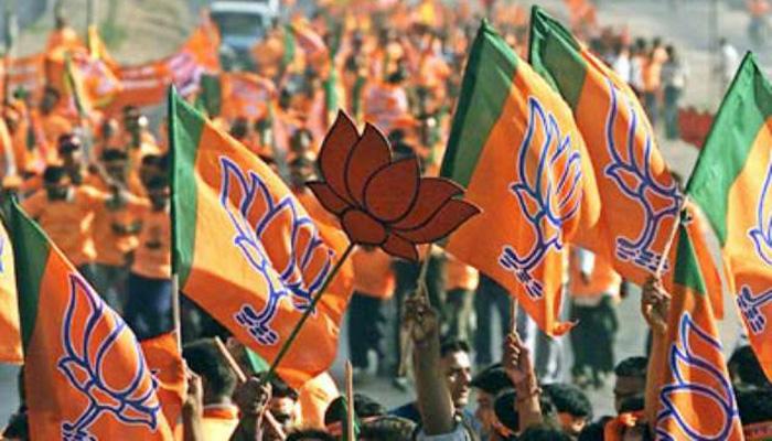 महाराष्ट्र: 2974 ग्राम पंचायत में से 1,457 पर बीजेपी ने जीत दर्ज की